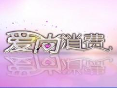 指尖古筝风 梦想新乐章——雷英古筝(2)